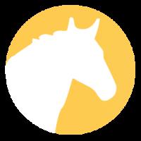 Aliments pour chevaux et poneys