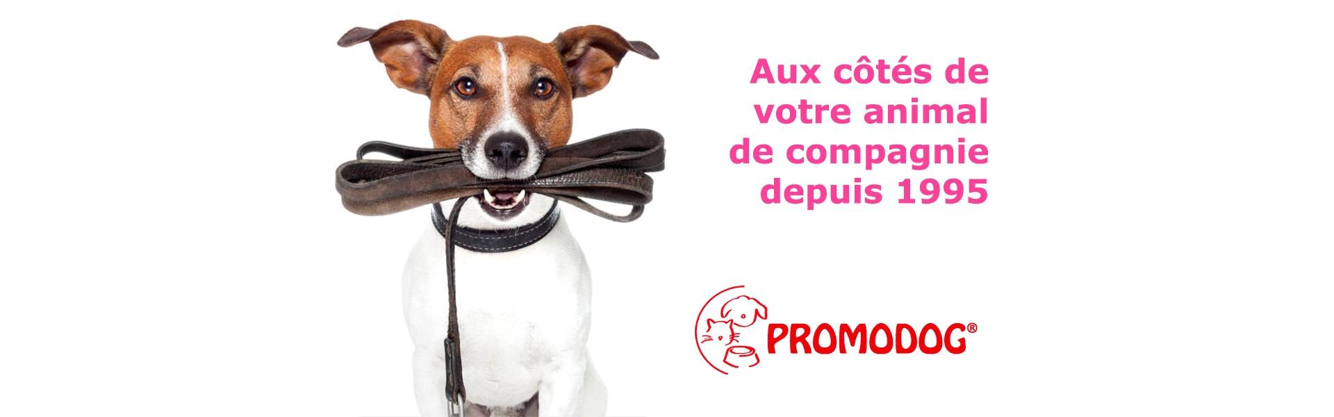 Promodog