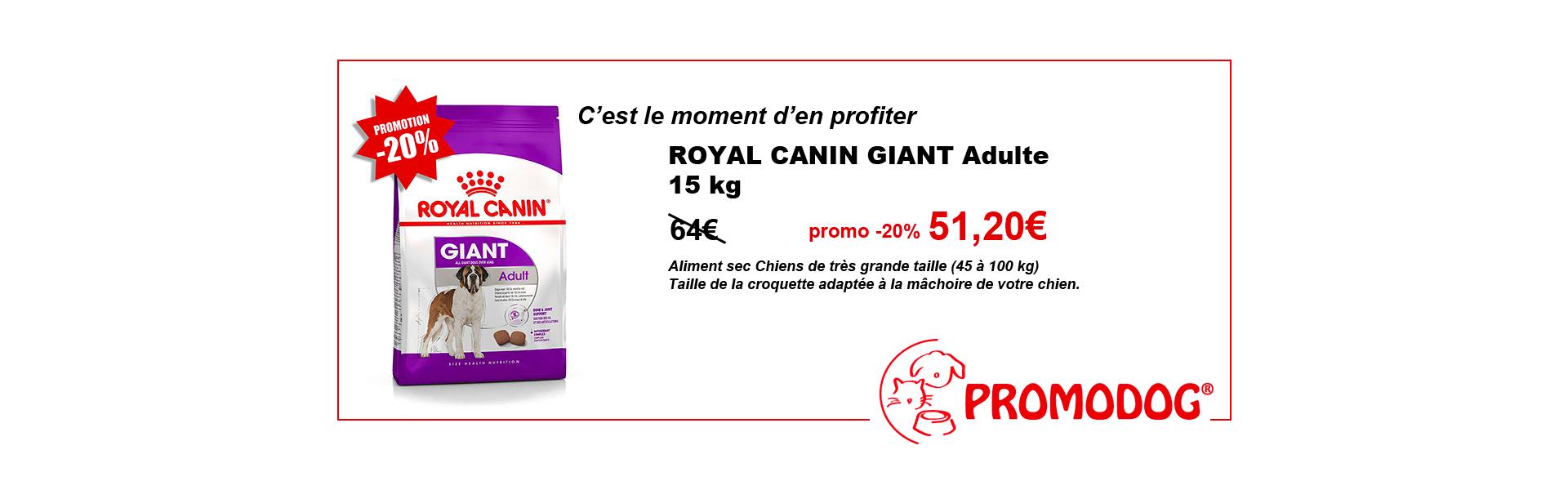 promo GIANT royal canin